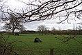 Field off Gains Lane - geograph.org.uk - 144241.jpg