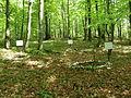 Filipovsky vrch - cmentarz wojenny - 01.JPG