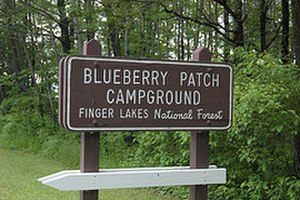 Finger Lakes National Forest - Entrance sign for Blueberry Patch Campground in the Finger Lakes National Forest.