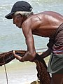 Fisherman Hauls in Catch - New Town - Galle - Sri Lanka (14024330866).jpg