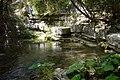 Fiume Rio Verde - panoramio.jpg