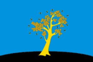 Osinsky District, Perm Krai - Image: Flag of Osinsky rayon (Perm krai)