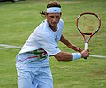 Flickr - Carine06 - David Nalbandian (32).jpg