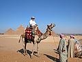 Flickr - archer10 (Dennis) - Egypt-12B-080.jpg