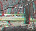 Flickr - jimf0390 - JimF 04-01-10-0015b geese.jpg