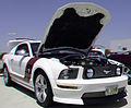 Flickr - jimf0390 - JimF 06-09-12 0045a Mustang car show.jpg