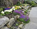 Floral display, the Gospel Gardens, Holy Island - geograph.org.uk - 1239920.jpg