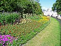 Flowerbed, St James's Park, London SW1 - geograph.org.uk - 1409078.jpg