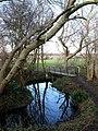 Footbridge, Eastbridge Road Recreation Ground - geograph.org.uk - 1174280.jpg