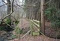 Footbridge in Brown's Wood - geograph.org.uk - 1760406.jpg