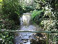 Footbridge over a small stream to the S of Fishbourne Road - geograph.org.uk - 1020141.jpg