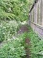 Footpath - Scholes Lane - geograph.org.uk - 1311842.jpg