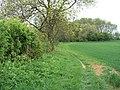 Footpath crosses bridleway (3) - geograph.org.uk - 1925260.jpg