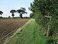 Footpath junction - geograph.org.uk - 565731.jpg