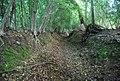 Footpath near Godden Green - geograph.org.uk - 856596.jpg