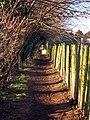 Footpath to Hadlow Road - geograph.org.uk - 1124860.jpg