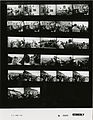 Ford A2226 NLGRF photo contact sheet (1974-11-30)(Gerald Ford Library).jpg