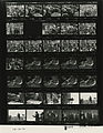 Ford B1849 NLGRF photo contact sheet (1976-10-13)(Gerald Ford Library).jpg