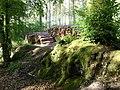 Forestry near Ideford Common - geograph.org.uk - 1371560.jpg