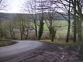 Forestry toll road through Dalby Forest at Bickley Gate - geograph.org.uk - 343717.jpg