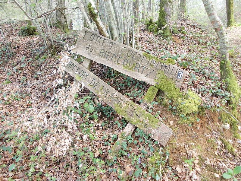 Panneau abandonné signalant la forêt communale de Biencourt sur Orge. À l'époque, le canton s'intitulait la Fouchere.