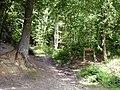 Foret de Montmorency - Chemin de l Entonnoir.jpg