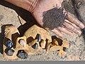 Fosil dan mineral logam.jpg