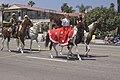 Four Riders (2786142157).jpg