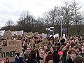 FridaysForFuture demonstration Berlin 15-03-2019 70.jpg