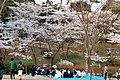 Fukushima (3823320315).jpg