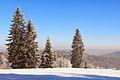 Góry Izerskie, Świeradów Zdrój - panoramio.jpg