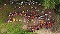 Ganapati Drone 8.jpg