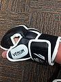Gant MMA.jpg