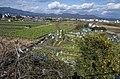 Gardens - panoramio (13).jpg