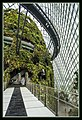 Gardens by the Marina Bay - Dome Clouds 03 (8332663518).jpg