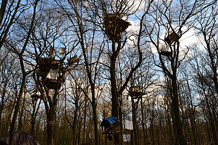 Tree houses for protesting the felling of part of Hambach Forest for the Hambach surface mine in Germany: after which the felling was suspended in 2018 Gemeinsam stark,Hambacher Forst,NRW.jpg