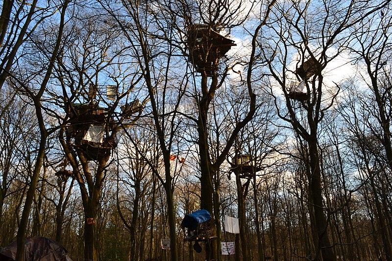 Datei:Gemeinsam stark,Hambacher Forst,NRW.jpg