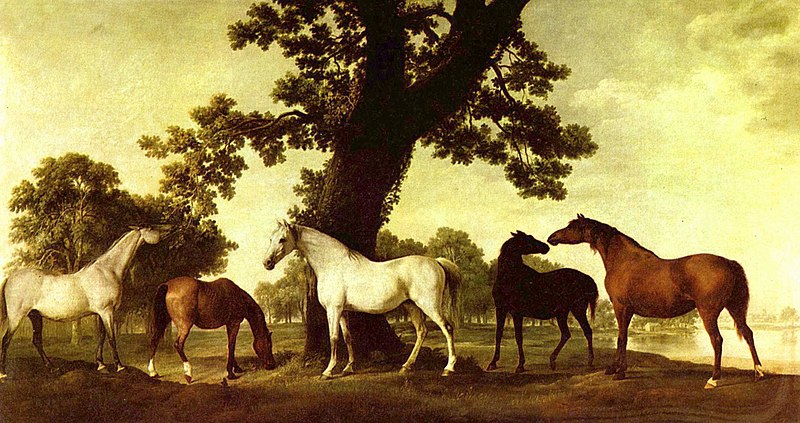 File:George Stubbs 014.jpg