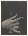Georgia O'Keeffe—Hand MET DP232997.jpg