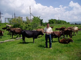 Agriculture in Georgia (country) - A cattle farmer on a recently privatized farm outside Tbilisi