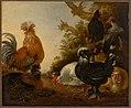 Gijsbert Gillisz. de Hondecoeter - Haan met kippen - 1327 (OK) - Museum Boijmans Van Beuningen.jpg