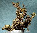 Gold-Copper-173734.jpg
