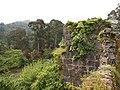 Gonio Fortress (DDohler 2011)-21.jpg