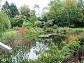 Gooderstone Water Gardens, Gooderstone, Norfolk - geograph.org.uk - 794060.jpg