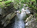 Gorge, Water of Nevis. - geograph.org.uk - 234018.jpg