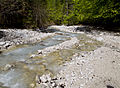 Gozd Martuljek - river5.jpg