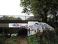 Graffiti under the A1214 - geograph.org.uk - 1553678.jpg
