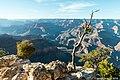 Grand Canyon 2018-09-26 087-LR (45488456031).jpg