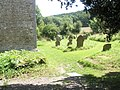 Graves in the churchyard at St Edith, Eaton - geograph.org.uk - 1446243.jpg