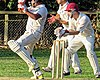 Great Canfield CC v Hatfield Heath CC at Great Canfield, Essex, England 60.jpg